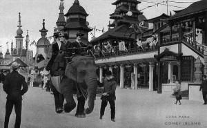 Lunapark elefante