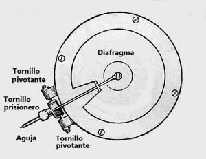 Diafragma